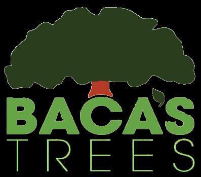 Bacas Trees
